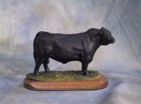 ABS Global bull portraits