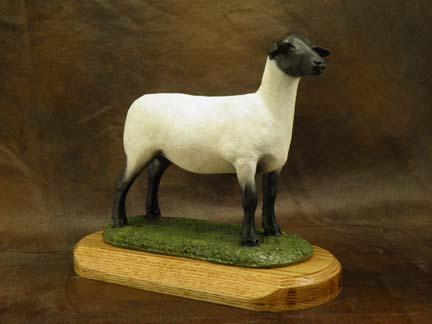 Suffolk Sheep Ewe