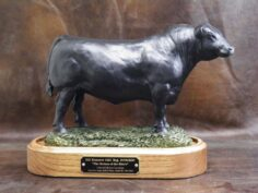 Angus Hall of Fame Bulls