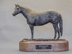 breed awards