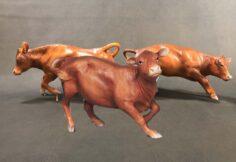 Hobby Cows